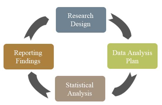 statistics and dissertation services